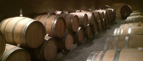Élevage des vins: les alternatifs boisés | Oenologie - Vins - Bières | Scoop.it