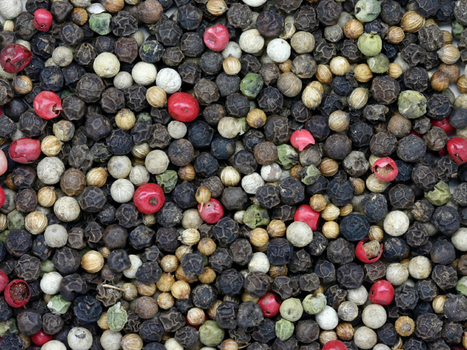 A Spice Buyer On Why Pepper Is Dirty, And How It Gets Clean | Agricultural Biodiversity | Scoop.it