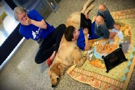 Bambino autistico incontra il suo cane: è subito amore | My Pet's Hero | Scoop.it
