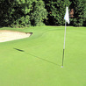 golf course management