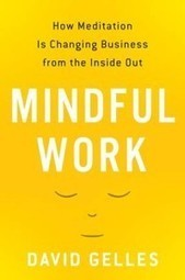 Mindful Work by David Gelles | Heather Bussing | Entretiens Professionnels | Scoop.it