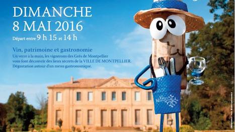 8 mai : Balade gastronomique aux Grés de Montpellier   Le vin quotidien   Scoop.it