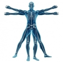 Incredible Speed and Lasting Result of Kinesiology | study kinesiology | Scoop.it