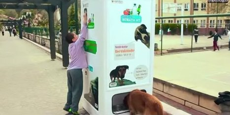 This Genius Machine Feeds Stray Dogs In Exchange For Recycled Bottles | Xposed | Scoop.it
