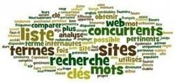 Google AdWords : Identifier ses mots clés stratégiques | Les chiffres clés du web marketing | Scoop.it