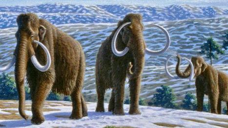 Will we ever clone extinct animals? | Amazing Science | Scoop.it