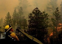 Killing the Flames: Fighting Forest Fires | Fire Detection Can Save Your Home | Scoop.it