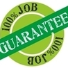 QA and Java Online Training and Placement
