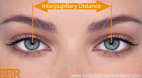 Interpupillary Distance & Binoculars | World of Optics | Scoop.it