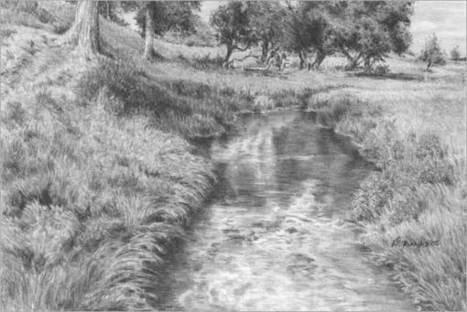 Tutorial sul disegno di paesaggi con erba ed erbacce, di Diane Wright | Circolo d'Arti | Scoop.it