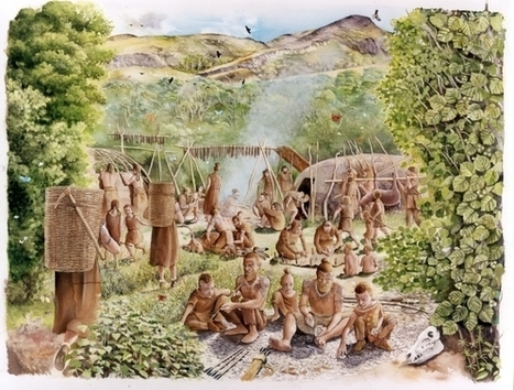 Mesolithic Mount Sandel, a Mesolithic campsite | Irish Archaeology | Archaeology Updates | Scoop.it