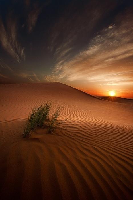 Desert Sunset....   Reflejos   Scoop.it
