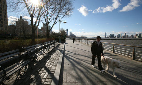 Times and Tides Weigh on Hudson River Park | Vertical Farm - Food Factory | Scoop.it