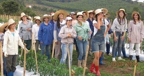 Brazilian Town Run by Women Is Looking for a Few Good (Single) Men | Xposed | Scoop.it