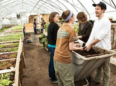 Cultivating an agricultural revolution - Toronto Star | Growing Food | Scoop.it