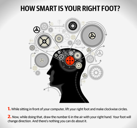 Discover 9 Brain Tricks | Life Hacking | Scoop.it