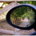 Sinapsis ele: Echar la vista atras | Sinapsisele 3.0 | Scoop.it