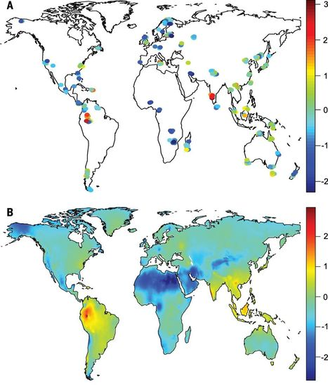 Global diversity and geography of soil fungi | Plant Biology Teaching Resources (Higher Education) | Scoop.it
