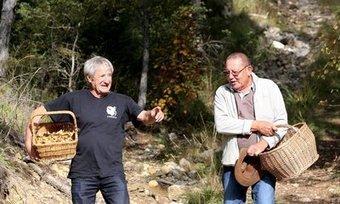 Soyez fins prêts pour la cueillette des champignons - Nice-Matin | Very Important Pleurotes... des bois à chez moi | Scoop.it