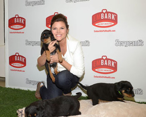 Sergeant's Pet Care Products taps Tiffani Thiessen for pet health awareness campaign | Drug Store News | SHEPHERD Health Care Update | Scoop.it