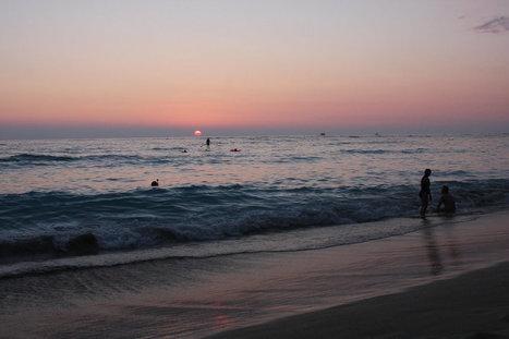 2016IMG_2671   ❀ hawaiibuzz ❀   Scoop.it
