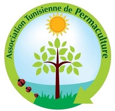 En Tunisie, le mouvement naissant d'une permaculture citoyenne | Des 4 coins du monde | Scoop.it