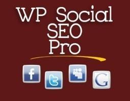 Wordpress Social Media Plugins - WP Social | WordPress | Scoop.it