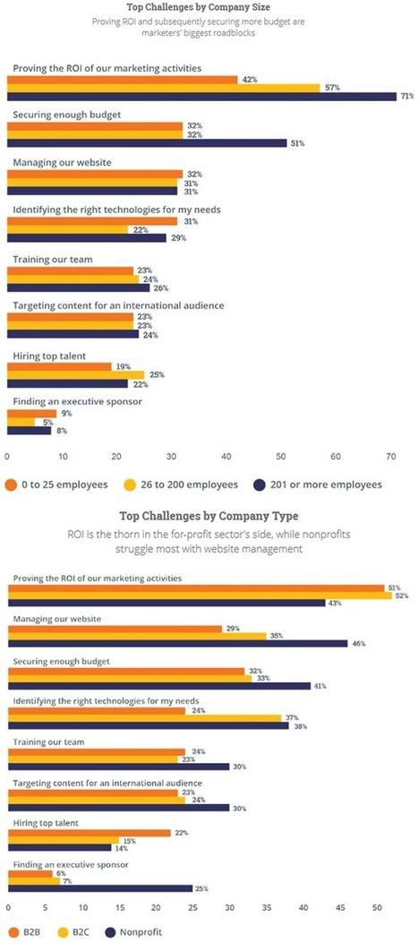 Leads, conversion et ROI : les 3 priorités pour les marketeurs en 2015 | Comarketing-News | Marketing Digital | Scoop.it