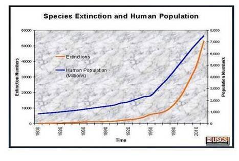 population_vs_extinction.jpg (552x372 pixels) | A2 Ethics | Scoop.it