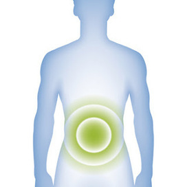 The Life Extension Blog: The Power of Probiotics for Gut Health | digestive health | Scoop.it