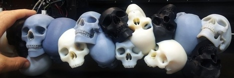 Objet Designer 3D Prints Conglomeration of Craniums | Printers And Cartridges | Scoop.it