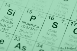 Comment on Phosphorus in Aquaponics by Aquaponic Plant Nutrients: Phosphorus   Keep America At Work   Aquaponics~Aquaculture~Fish~Food   Scoop.it