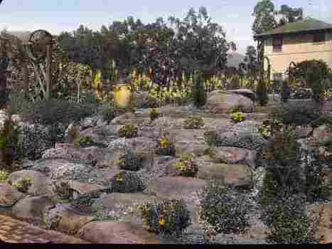 When America Was Crazy About Rock Gardens | AP HUMAN GEOGRAPHY DIGITAL  STUDY: MIKE BUSARELLO | Scoop.it