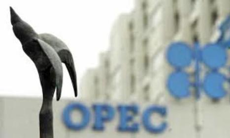 OPEC deal will pack little punch in raising oil prices - Investors Buz | INVESTORS BUZZ | Scoop.it
