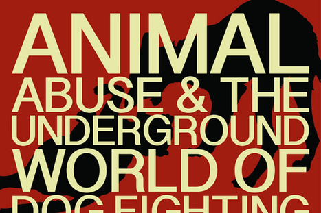 65 Catchy Animal Abuse and Cruelty Slogans   Animal abuse   Scoop.it
