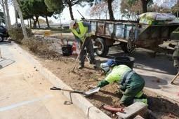 Cambrils millora accessos i jardins del pàrquing del Parc del Pescador | #territori | Scoop.it