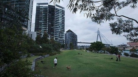 Sydney's newest urban utopia | Geography in the classroom | Scoop.it