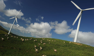 Renewable energy schemes help boost farmers' profits | green streets | Scoop.it