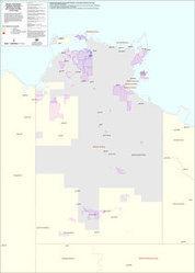 Feral pigs - invasive animals in Australia   Feral Pigs   Scoop.it