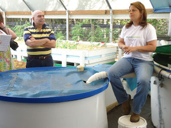 The Living Ocean: Aquaponics: The New Wave of the Future? | Vertical Farm - Food Factory | Scoop.it