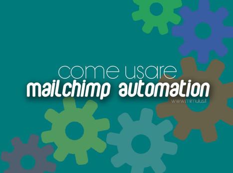Come usare Mailchimp Automation | Social Network & Web | Scoop.it