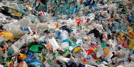The Plastic Bank, la start-up qui transforme les déchets plastiques en monnaie | internet et education populaire | Scoop.it
