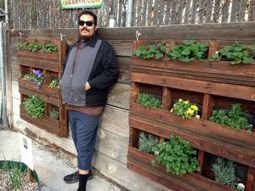 Creating vertical gardens with recycled pallets - OCRegister   Fun Recycle   Scoop.it