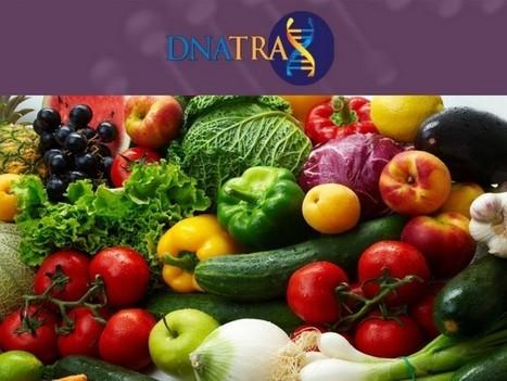 Espray con tecnología ADN para la trazabilidad alimentaria - Gastronomía & Cía (blog) | Genética humana | Scoop.it