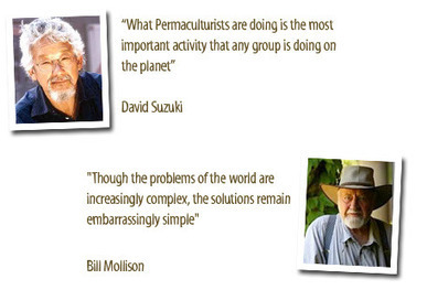 Permaculture Sydney North | Permaculture Australia | Scoop.it