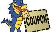 Hostgator Reseller Maximum Discount Coupon Code 2013 | Lake Of Web | M4k | Scoop.it