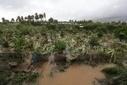 Victorin à Lurel à La Réunion ce samedi pour | Risques et Catastrophes naturelles dans le monde | Scoop.it