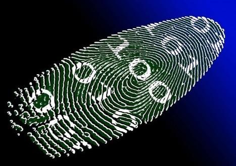 5 consejos que te ayudarán a evitar el robo de identidad | Music, Videos, Colours, Natural Health | Scoop.it