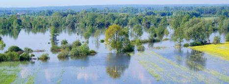 L'Etat se dote d'une stratégie nationale de gestion des risques d'inondation   Risques et Catastrophes naturelles dans le monde   Scoop.it