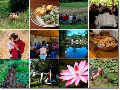 PRI Zaytuna Farm, Australia, Course Update - Permaculture ... | Permaculture News | Scoop.it